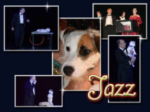 Jazz the crafty dog- le chien - malin - magie - comique - attractions visuelles