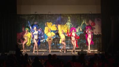 spectacle brazil novotel paris
