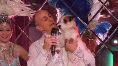 spectacle-finale-vitotel-Jazz le chien present
